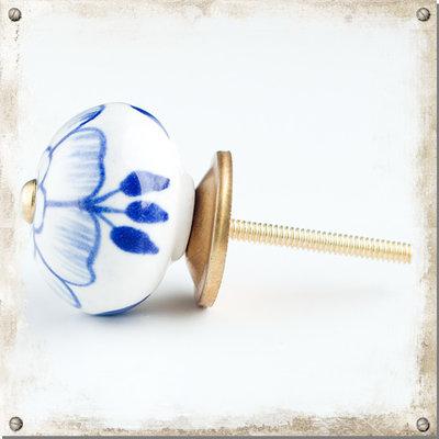 Vit knopp med stor blå blomma