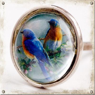 Metallknopp med glas, fågel
